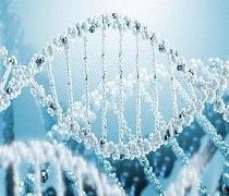 آخرین رتبه لازم برای قبولی زیست شناسی سلولی مولکولی نوبت دوم
