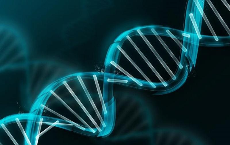 حد نصاب و تراز قبولی دعوت به مصاحبه آزمون دکتری زیست شناسی سلولی و مولکولی