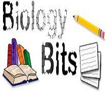 زیست شناسی کنکور تجربی