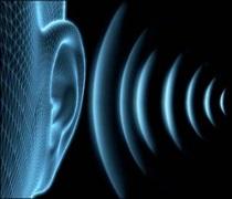 آخرین رتبه قبولی شنوایی شناسی پردیس خودگردان